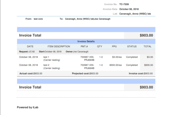 An example iLab invoice